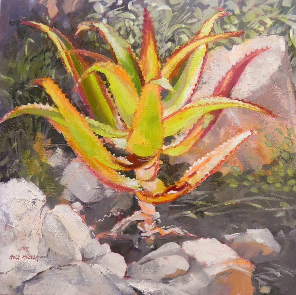 Hello Aloe 650x650 oil