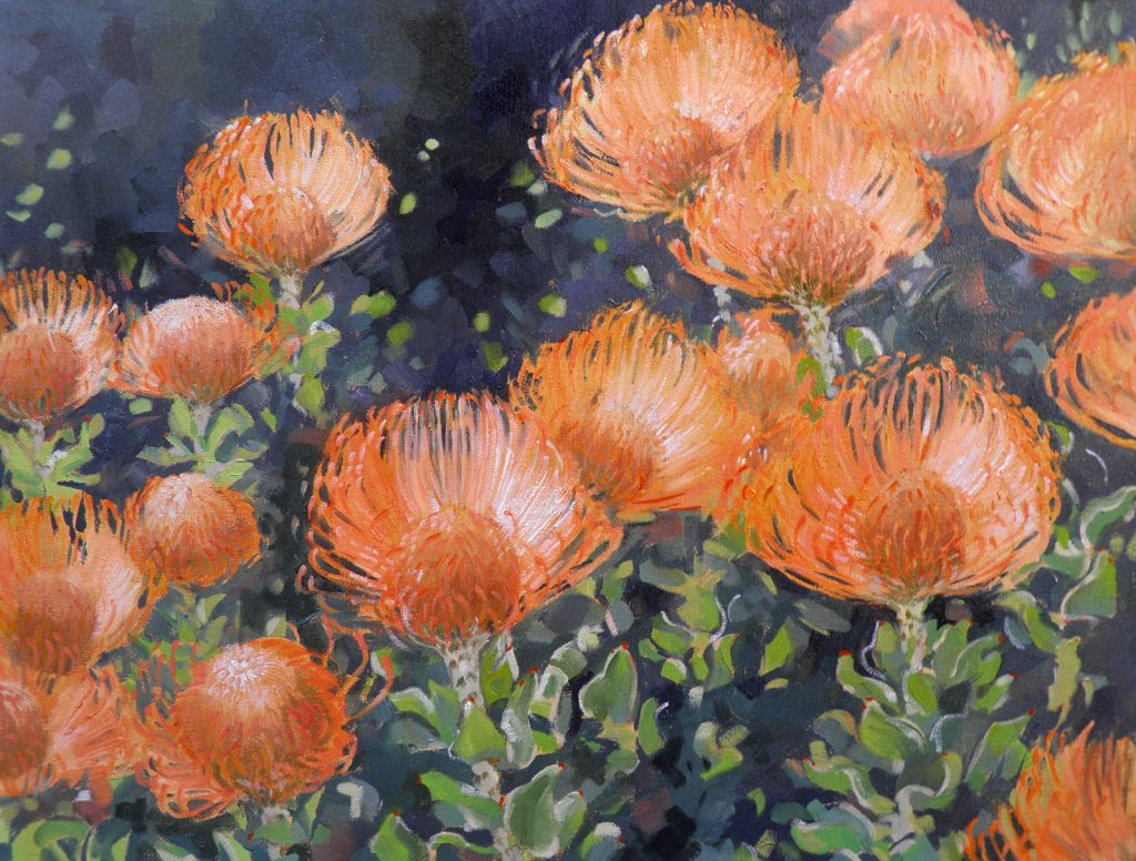 Leucospermums 600x800 oil