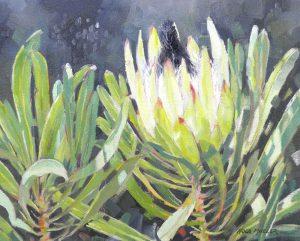 Protea Longifolia 400x500 Oil