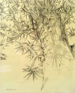 Drawing. Quiver tree 600x470