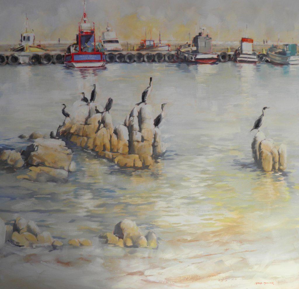 Oil. Cormorants at Kalk Bay 1000x1000