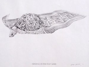 Drawing. Staying in the fast lane 420x540